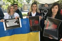 Free Sentsov  4