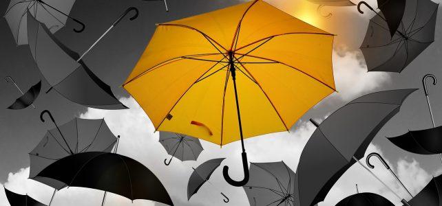 Umbrella UCC Edmonton